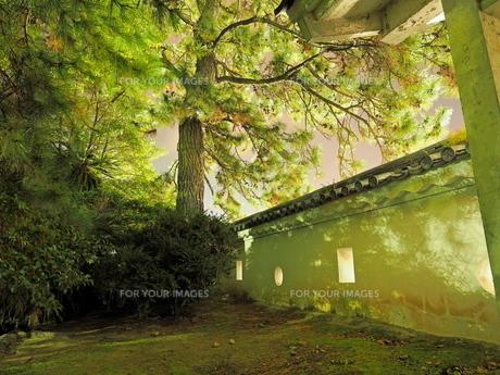 夜の福山城の様子の写真素材 [FYI01243278]