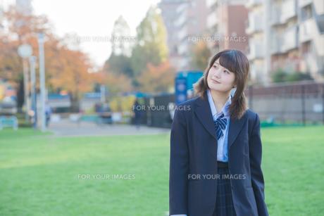 女子高生の写真素材 [FYI01243386]