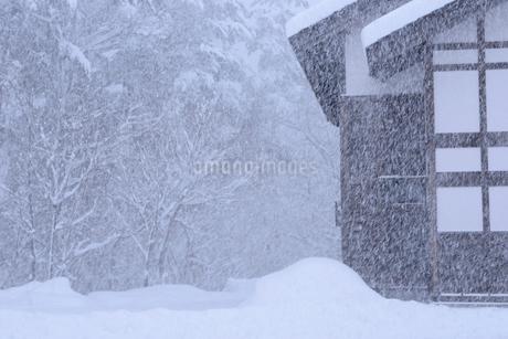 雪国の風景の写真素材 [FYI01243557]