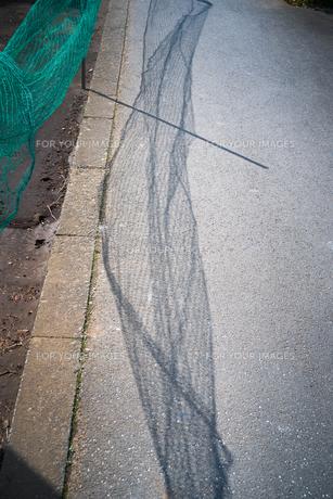 道路の影が風に吹かれているの写真素材 [FYI01243569]