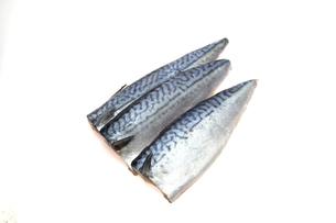 塩サバの写真素材 [FYI01243669]