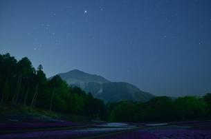 武甲山と芝桜の写真素材 [FYI01243696]