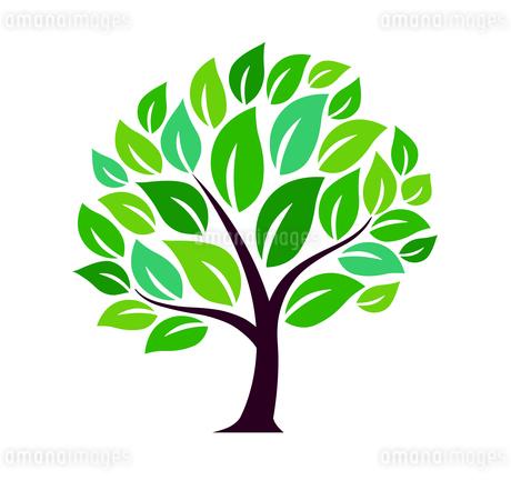 樹木のデザイン素材のイラスト素材 [FYI01243823]