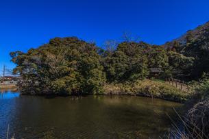 冬の佐倉城の空堀の風景の写真素材 [FYI01243896]