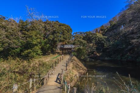 冬の佐倉城の空堀の風景の写真素材 [FYI01243920]