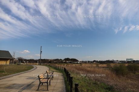 郊外の風景 青い空と公園の写真素材 [FYI01244057]