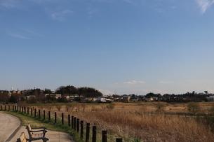 郊外の風景 青い空と公園の写真素材 [FYI01244060]
