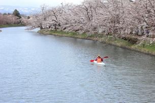 桜とカヌーの写真素材 [FYI01244154]