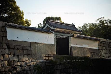 大阪城桜門の写真素材 [FYI01244166]