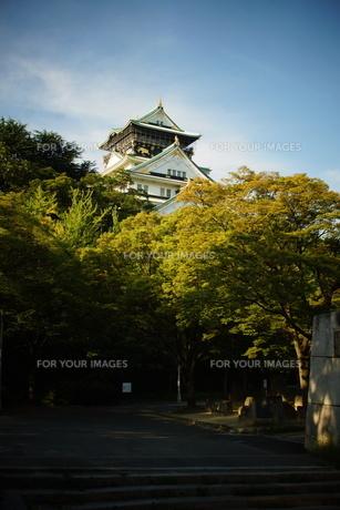 大阪城天守閣の写真素材 [FYI01244171]