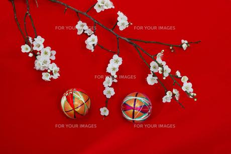 和風イメージ の写真素材 [FYI01244293]