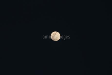夜空の月の写真素材 [FYI01244330]