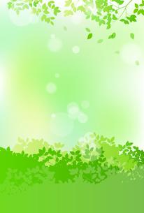 緑と木漏れ日 背景素材のイラスト素材 [FYI01244600]