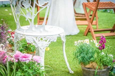 カラフルな花に包まれた庭園の写真素材 [FYI01244677]