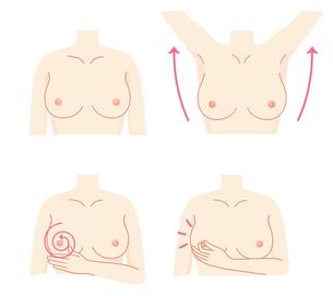 乳がん 自己検診セットのイラスト素材 [FYI01244689]