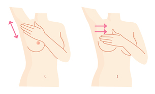 乳がん 自己検診セットのイラスト素材 [FYI01244691]