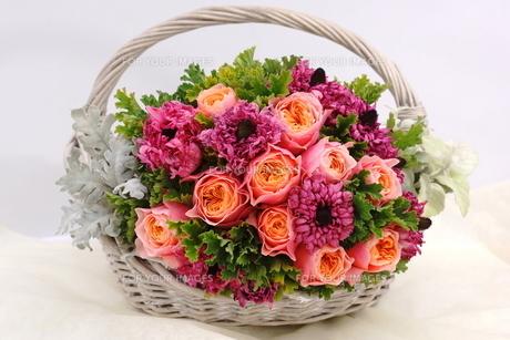 バラとラナンキュラスの花かごの写真素材 [FYI01244895]