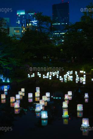 灯篭流しのイメージの写真素材 [FYI01245045]