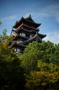 伏見桃山城天守閣の写真素材 [FYI01245120]