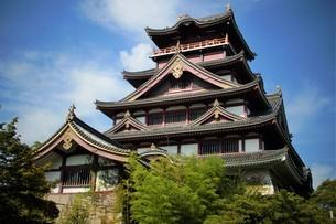伏見桃山城天守閣の写真素材 [FYI01245121]