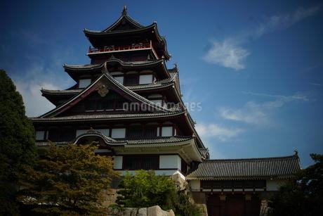 伏見桃山城天守閣の写真素材 [FYI01245123]