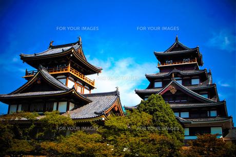 伏見桃山城天守閣の写真素材 [FYI01245125]