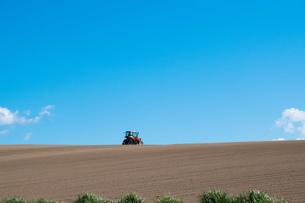 春の畑と青空の写真素材 [FYI01245366]