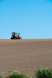 春の畑と青空の写真素材 [FYI01245367]
