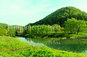 里山・鯉のぼりの写真素材 [FYI01245724]