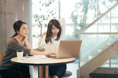 オフィス。パソコン。一息。OL女性2人の写真素材 [FYI01245745]
