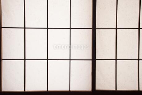 障子のアップの写真素材 [FYI01245944]