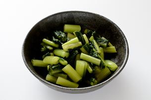 野沢菜の写真素材 [FYI01245980]