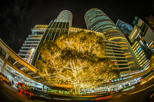 名古屋駅前の夜景の写真素材 [FYI01246068]