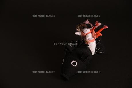 兜 男の子 鯉 人形の写真素材 [FYI01246416]