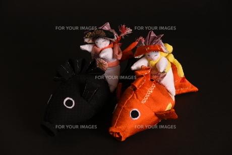 兜 男の子 鯉 人形の写真素材 [FYI01246418]