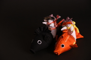 兜 男の子 鯉 人形の写真素材 [FYI01246419]