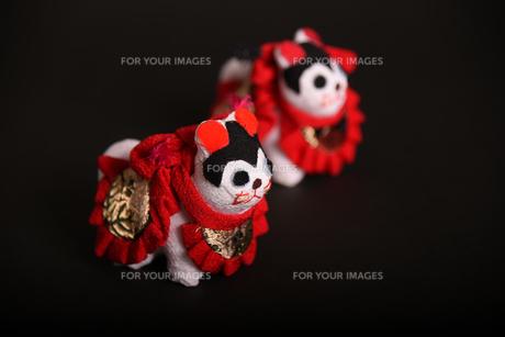 犬 狆 人形の写真素材 [FYI01246422]