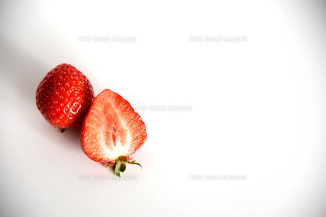 イチゴ 白バックの写真素材 [FYI01246567]