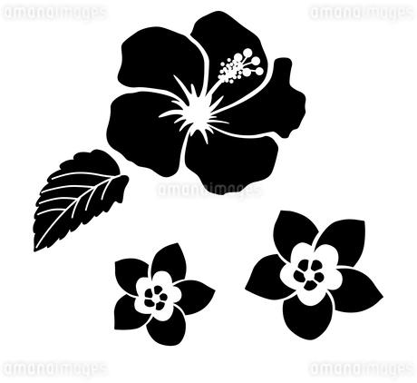 南国の花 アイコンセットのイラスト素材 [FYI01246583]