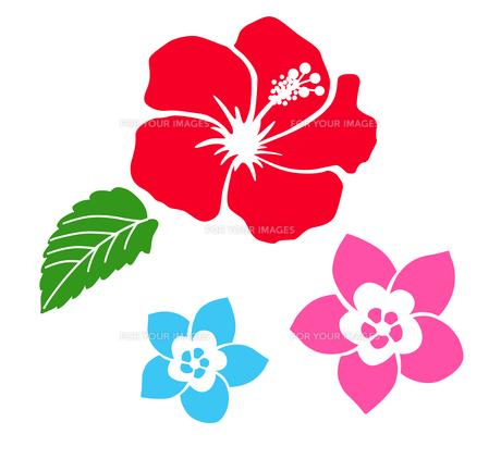 南国の花 アイコンセットのイラスト素材 [FYI01246584]