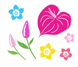 南国の花 アイコンセットのイラスト素材 [FYI01246594]