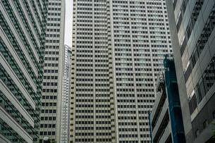 新宿のビル群の写真素材 [FYI01246639]