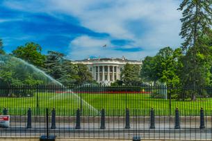 ホワイトハウス(ワシントンDC)の写真素材 [FYI01246681]