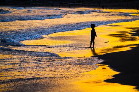 夕暮れの波打ち際で遊ぶ子供の写真素材 [FYI01246712]