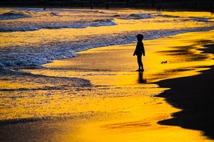 夕暮れの波打ち際で遊ぶ子供の写真素材 [FYI01246713]