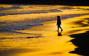夕暮れの波打ち際で遊ぶ子供の写真素材 [FYI01246714]