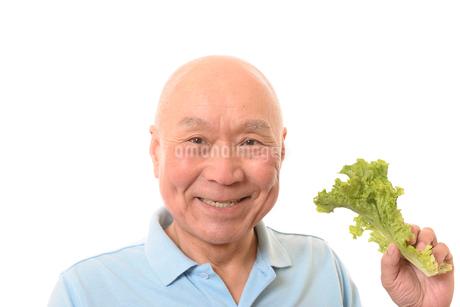 葉野菜を食べるシニアの写真素材 [FYI01246812]