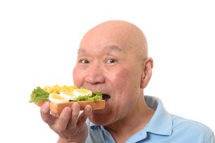 卵料理を食パンにのせて食べるシニアの写真素材 [FYI01246824]