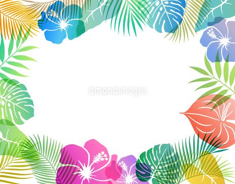 夏のトロピカルイメージ 背景素材のイラスト素材 [FYI01247103]