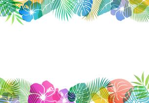 夏のトロピカルイメージ 背景素材のイラスト素材 [FYI01247104]